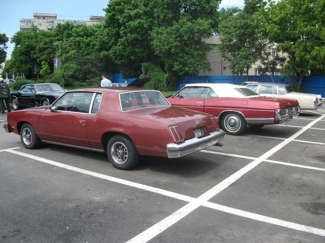 Olsmobile Cutlass & Ford LTD